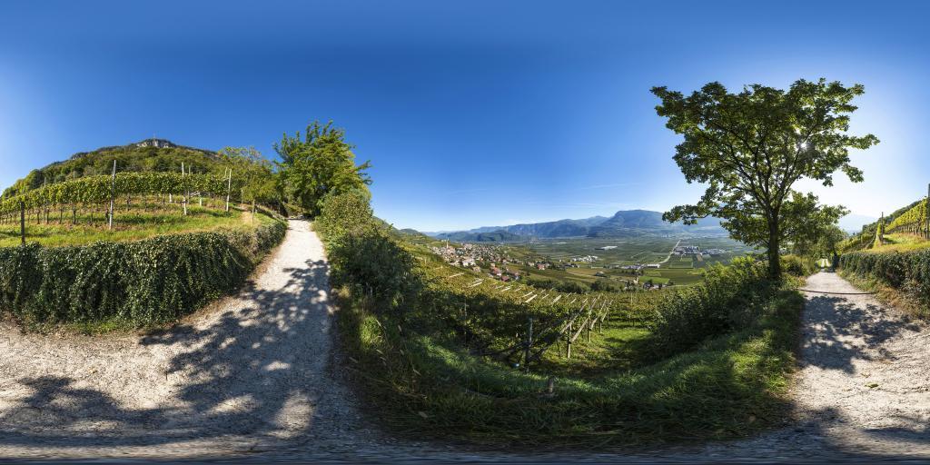 View of Tramin/Termeno - Giggerblick