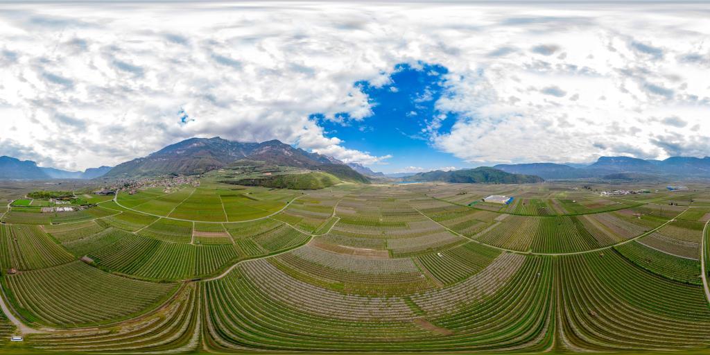 La fioritura tra lago di Caldaro e Termeno