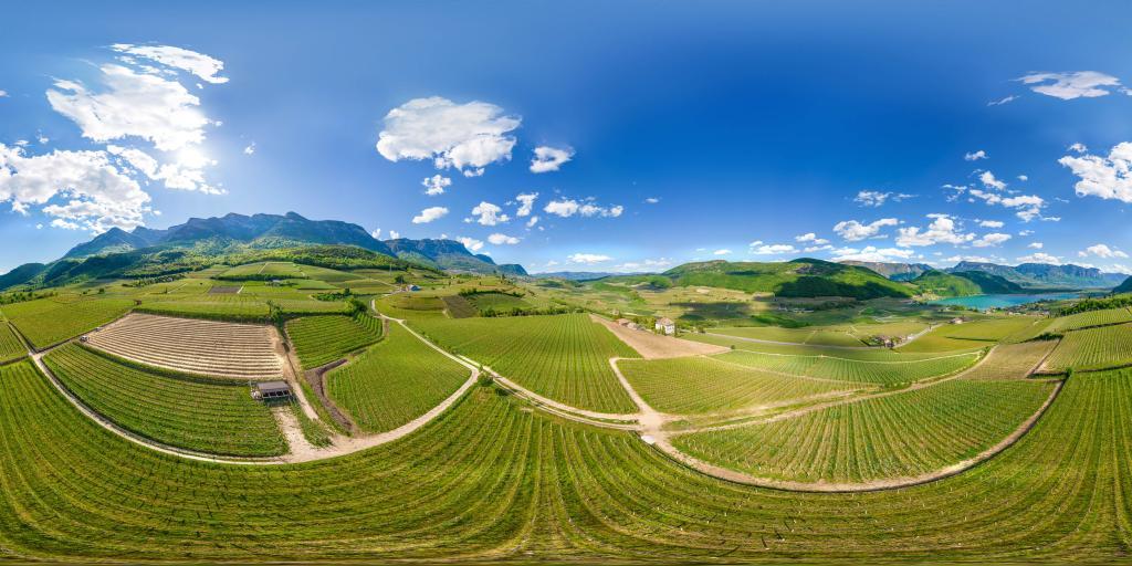 Blick über die Weinberge zum Kalterer See